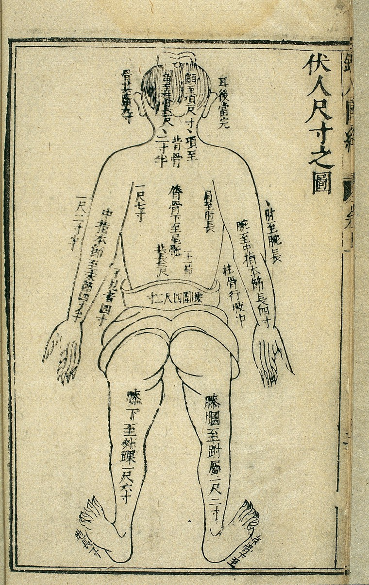 Body measurements, back view, Chinese woodcut, 1443